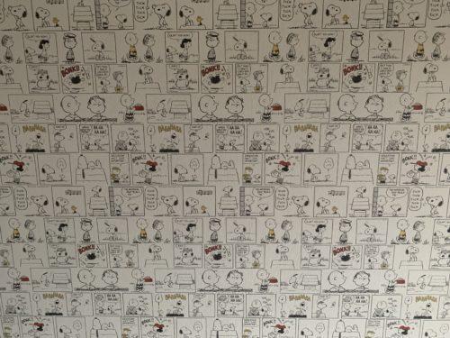 ライオンズマンション西霞町第2の壁クロスの写真です